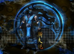 Video Games Sub Zero Mortal combat