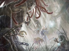 Fantasy et Science Fiction elfe faller