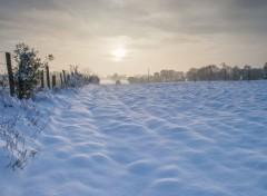 Nature tapis de neige