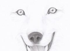 Art - Crayon Loup! :P