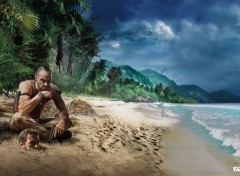 Video Games Far Cry 3