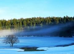 Nature Lac Genin - Hiver 1