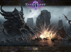 Video Games heart of the swarm
