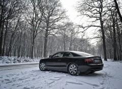 Cars Audi A5 snow