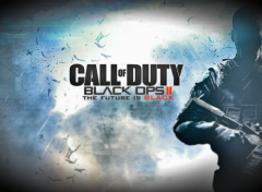 Video Games Call Of Duty BO2