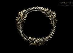 Video Games The Elder Scrolls Online