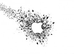 Informatique Fond Apple
