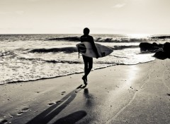 Sports - Leisures Surf