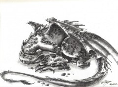 Art - Pencil dragons