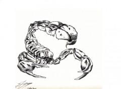 Art - Pencil scorpion