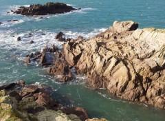 Nature Côte bretonne...