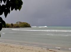 Voyages : Amérique du nord Martinique plage de l'anse Meunier, déferlante pointe Catherine
