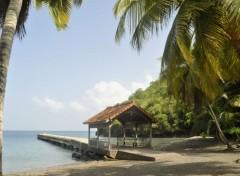 Voyages : Amérique du nord Martinique le ponton de l'anse Noire