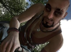 Video Games Vaas la folie Far Cry 3