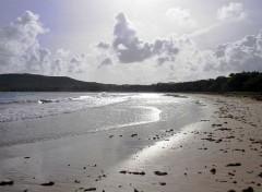 Voyages : Amérique du nord Martinique anse Trabaud contre jour