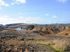 Voyages : Amérique du nord Martinique grand sud la savane des pétrifications