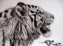 Art - Crayon tribal tiger