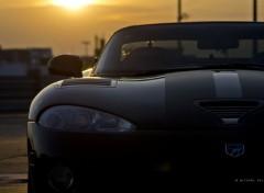 Cars Viper