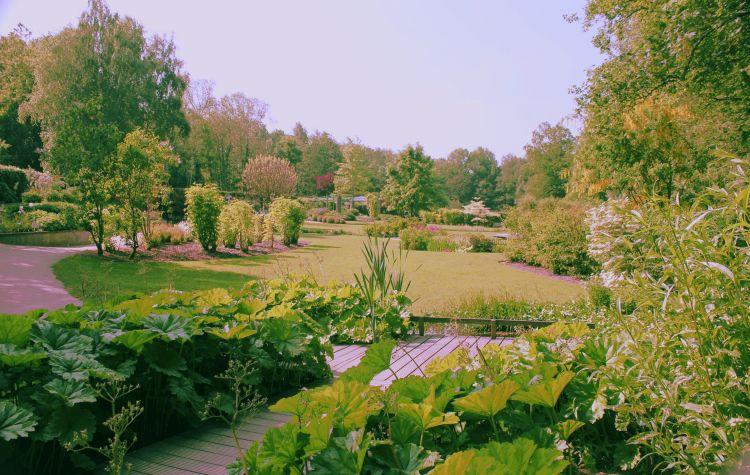 Fonds d 39 cran nature fonds d 39 cran parcs jardins jardins du lac de bambois fosses la ville for Ecran de jardin belgique