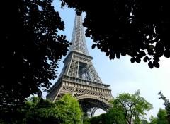 Voyages : Europe Derrière les arbres