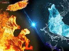 Digital Art Tigre de feu contre Loup d'eau
