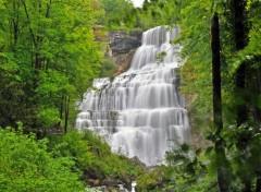 Nature cascade du herisson