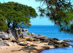 Nature plage