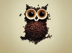 Objets Café hibou !