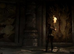 Video Games screenshoot de Tomb Raider 2013