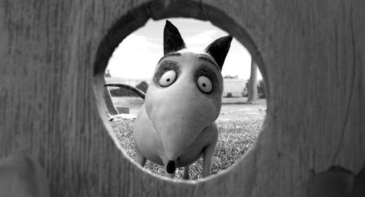 Wallpapers Cartoons Frankenweenie Wallpaper N°367503