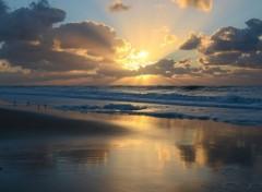 Nature coucher de soleil sur les plages des Landes