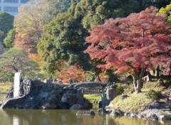 Voyages : Asie Printemps Koishikawa Kōraku-en