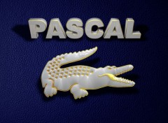 Digital Art Pascal Lacoste