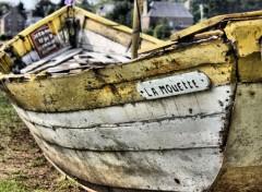Boats La mouette