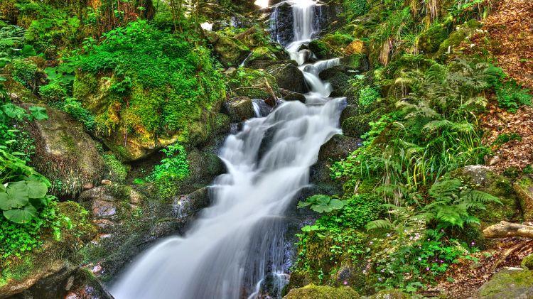 Fonds d'écran Nature Cascades - Chutes au fil de l'eau
