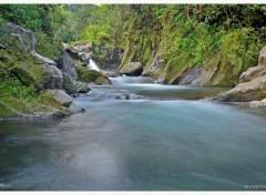 Nature Rivière Langevin