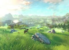 Jeux Vidéo The Legend of Zelda Wii U