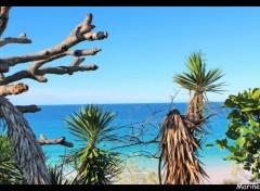 Trips : Oceania Bienvenue de l'autre coté