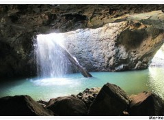 Voyages : Océanie The natural bridge, Springbrook national park