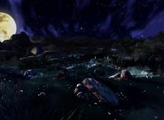 Jeux Vidéo Hyrule plain night