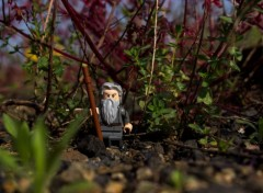 Objets La ballade de Gandalf
