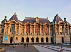 Constructions and architecture Musée des beaux-arts de Lille