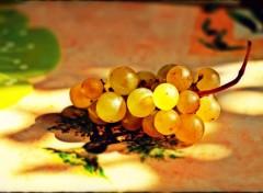 Nature raisin