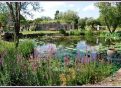 Nature Jardin de Saint-Adrien - Servian (34)