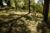 wallpaper Parcs - Jardins (cat�gorie wallpapers Nature)