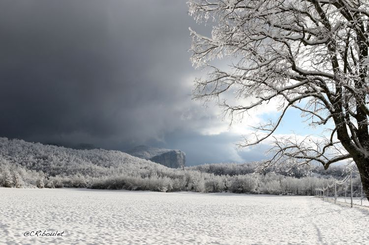 Wallpapers Nature Saisons - Winter Clair obscur