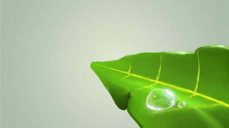 Fonds d'écran Art - Numérique Nature - Arbres, Plantes Feuille