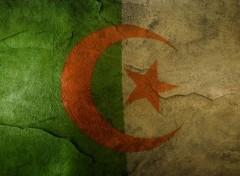 Voyages : Afrique Drapeau Algerie Stylée
