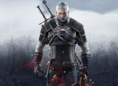 Video Games The Witcher 3 - Geralt de Riv