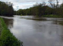 Nature L'Yonne à Auxerre